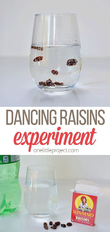 Dancing Raisins Experiment Dancing Raisins Experiment Preschool Science Activities Science Experiments Kids
