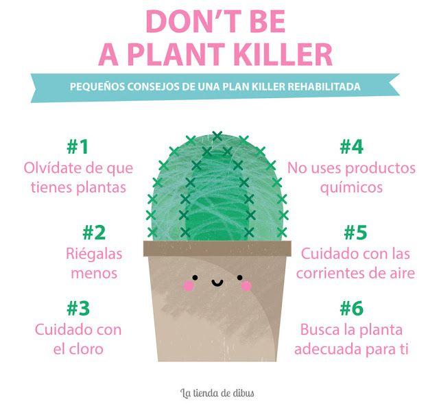 6 trucos infalibles para dejar de ser un o una plant killer