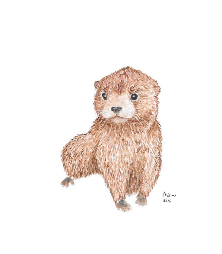 Otter baby Aquarelle by Valpuri
