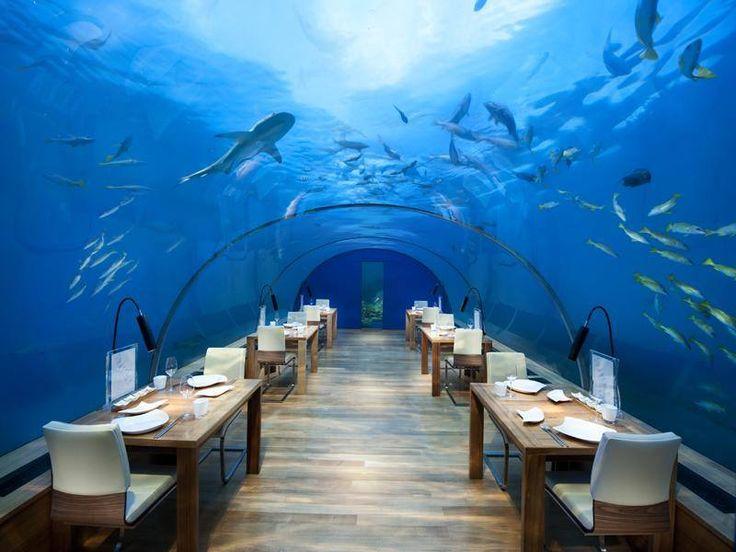 Restaurant sous-marin aux Maldives