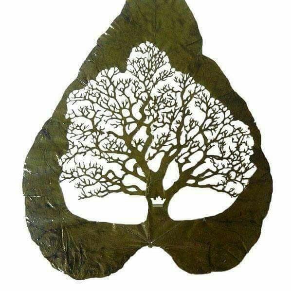 الرسم على ورق الشجر Sanat Yaprak