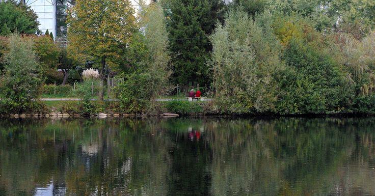 Angouleme, automne, la Charente