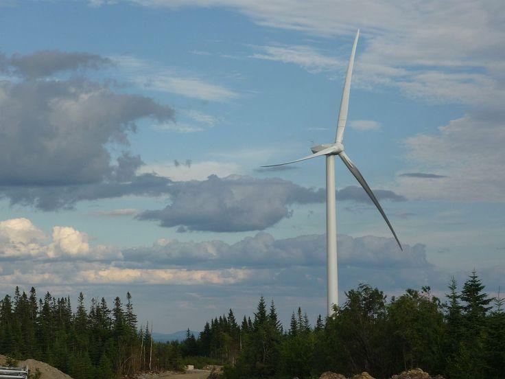 January 28 Green Energy News