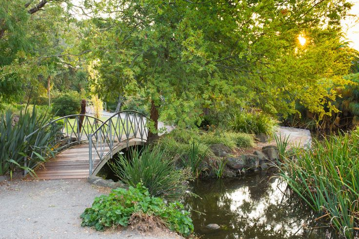 The footbridge, the trees, the setting sun <3