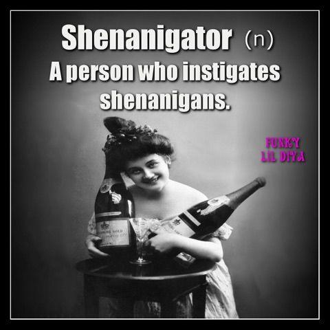 #shenanigator #shenanigans #funkylildiva #quotes