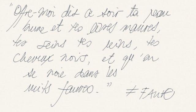 """Fauve """"Nuits Fauves"""" // inspirations"""