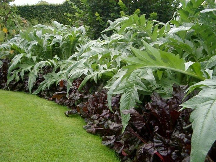 Im genes espectaculares de jardines exuberantes dise os for Diseno de jardines para eventos