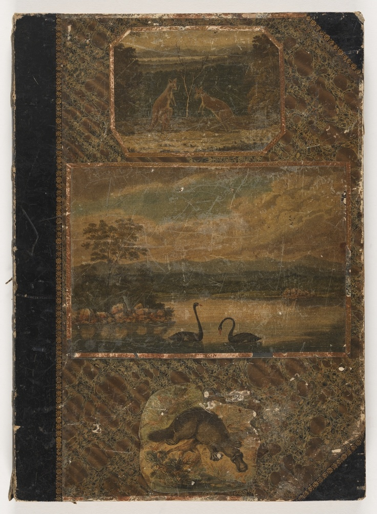 The Wallis Album was discovered in Ontario, Canada, as part of a deceased estate, the beautiful Wallis Album was purchased at auction by the State Library of NSW in October 2011.