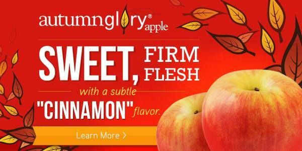 Learn more about Superfresh Growers Autumn Glory Apples here: http://www.superfreshgrowers.com/our-fruit/apples/autumn-glory
