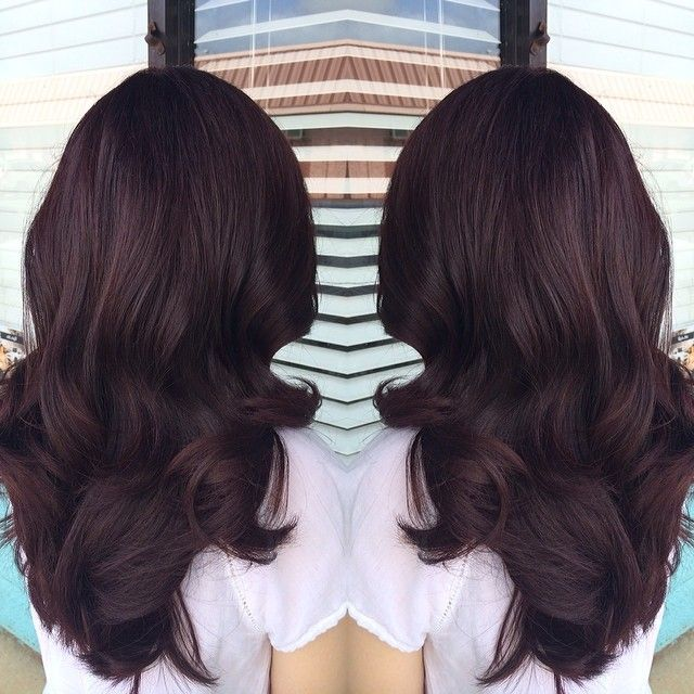 Deep violet red brown level 5