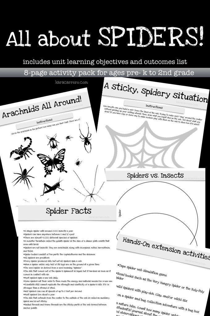 Arachnid Unit Study All About Spide...