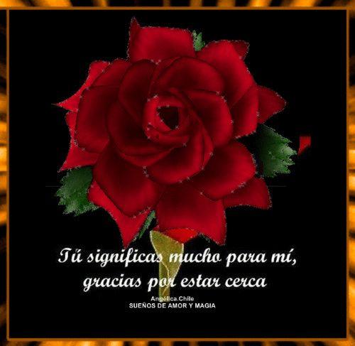 SUEÑOS DE AMOR Y MAGIA: Tu significas mucho para mi