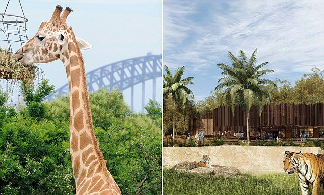 Taronga Zoo and Sydney Zoo go to court over use of name Sydney Zoo