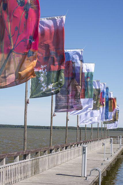 Fahnen am Hafen von Dierhagen by Witz und Verstand, via Flickr