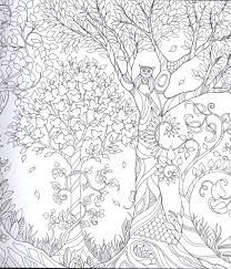 Colouring picture for adults