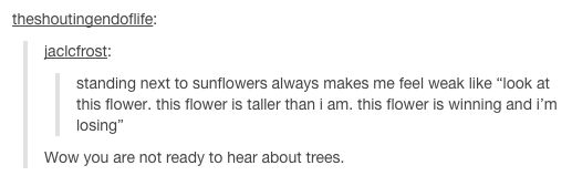 When someone couldn't see the forest for the trees, or at all for that matter. | 21 Times Tumblr Was An Absolute Disaster