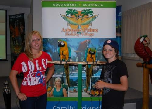 Meet these amazing tame blue and gold macaws named Tango and Cash at Ashmore Palms Holiday Village.