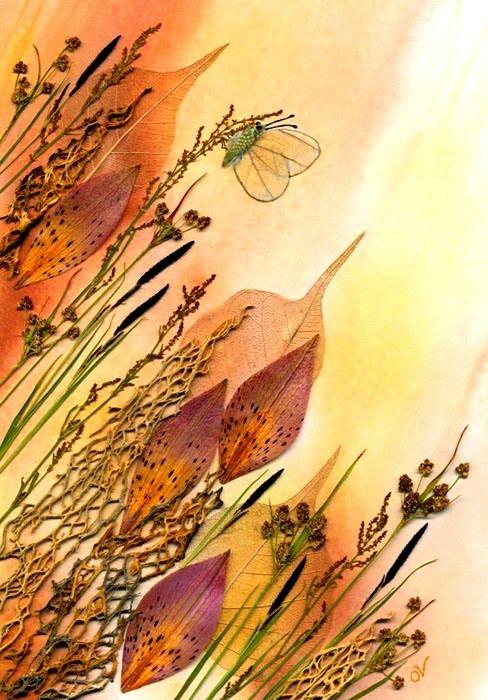 аппликации бабочек из сухих лепестков: 10 тыс изображений найдено в Яндекс.Картинках