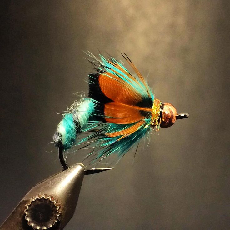 Does a trout eat this or not? #flytying #flytyingtable #flytyingbench #flytyingporn #flyfishing #troutfishing #trout #renzetti #flymenfishingco #orvis #nymphing #anchorfly #catchandrelease #zeusoftrout #theflylab