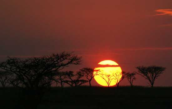 African sunrise - KwaZulu-Natal. Wild and free, like no other that you will ever see!