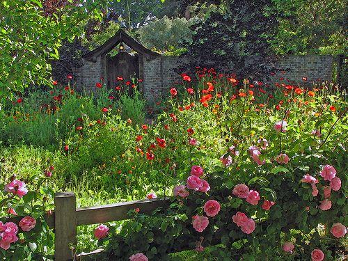 17 meilleures id es propos de cottages anglais sur for Concevoir un jardin anglais