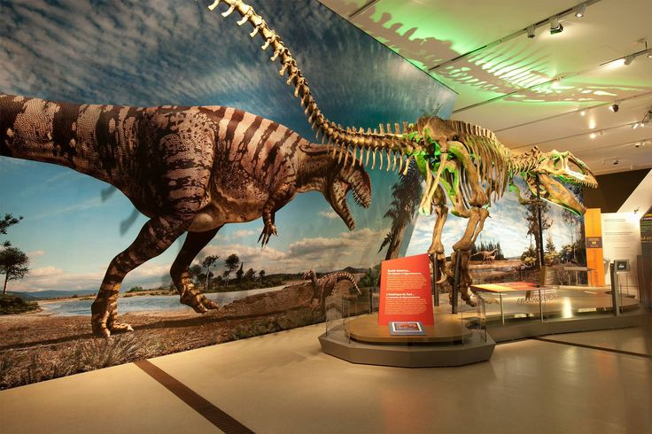 Ultimate Dinosaurs : Giants of Gondwana at Royal Ontario Museum, #Toronto, #Canada