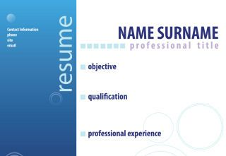 professional engineer resume writing service Sample Resume for someone seeking a job in Executive Management  Organizational Leadership  Team Building  Client Relations  Performance  Enhancement
