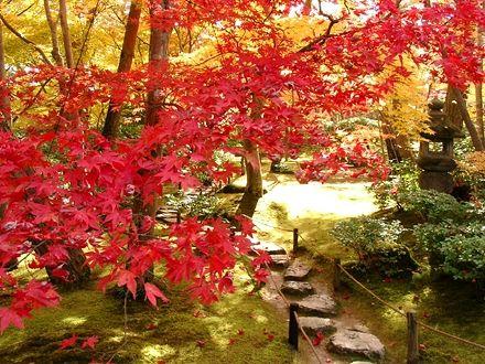 大河内山荘/京都 嵐山 (I don't know what it says, but I'm sure it has something to do with a beautiful path through a beautiful garden.)