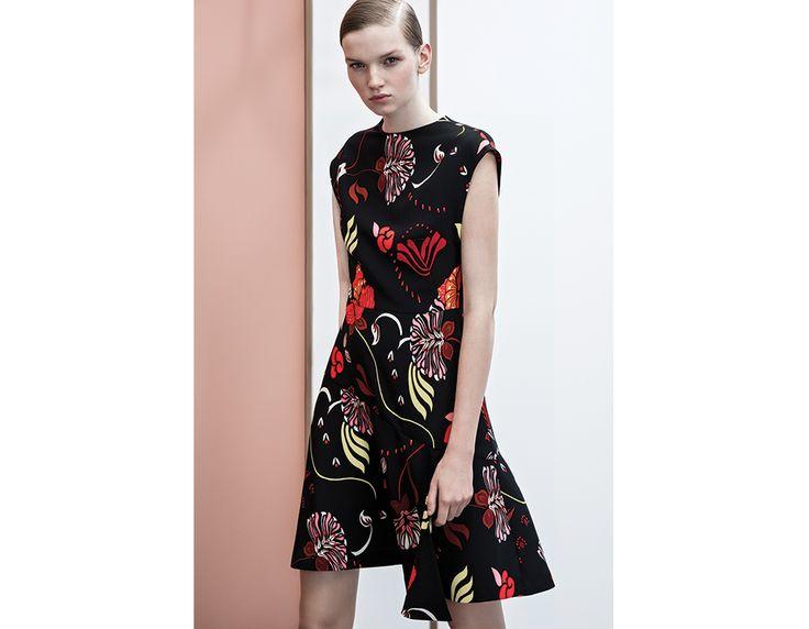 Veronika maine navy lace dress