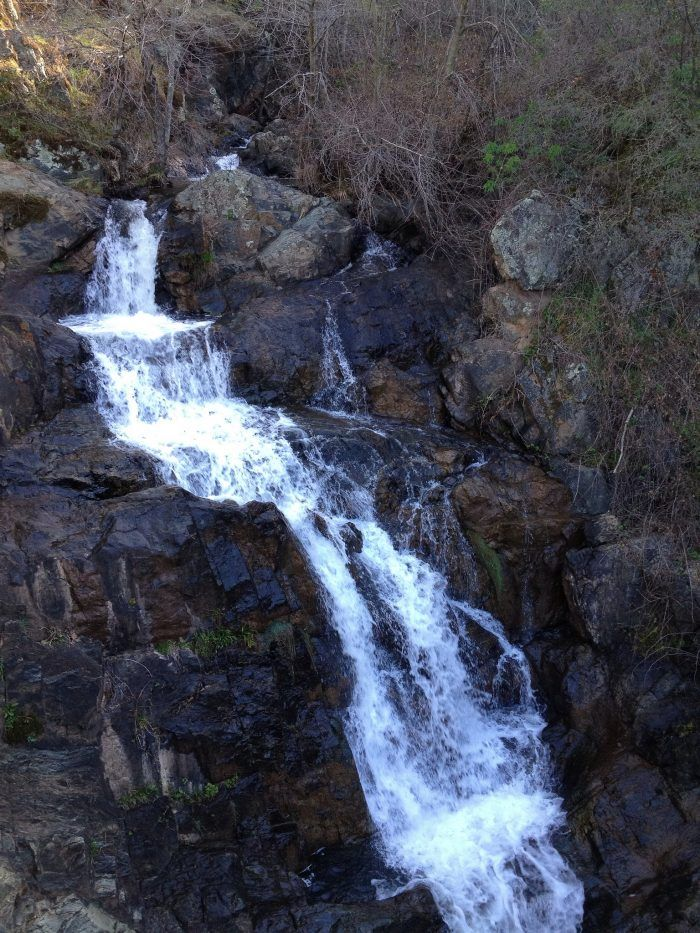 Wondering what to do this weekend? The weather is too beautiful to miss. How about enjoying some of Northern California's breathtaking hiking trails?