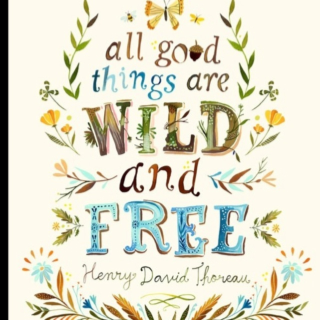 in to the wild transcendentalism Mccandless, according to into the wild among my friends and acquaintances, the story of christopher mccandless makes great after-dinner conversation.