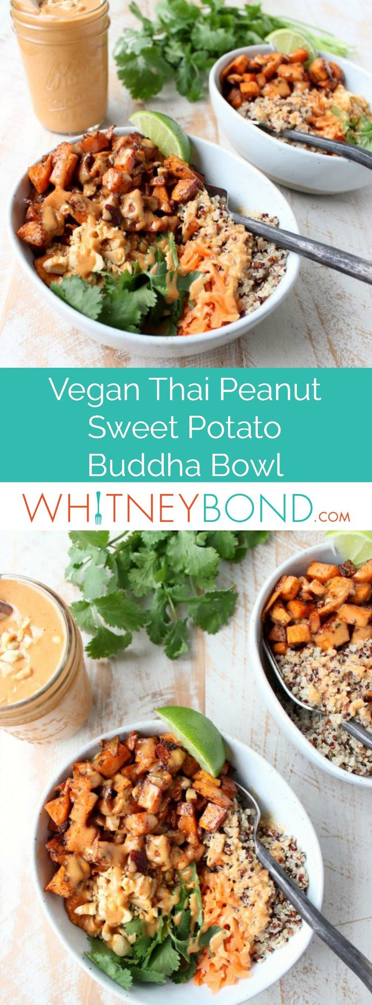 Roasted sweet potatoes and quinoa are topped with delicious Thai peanut sauce in this healthy, gluten free & vegan buddha bowl recipe! #vegan #healthy #glutenfree #recipe #buddhabowl