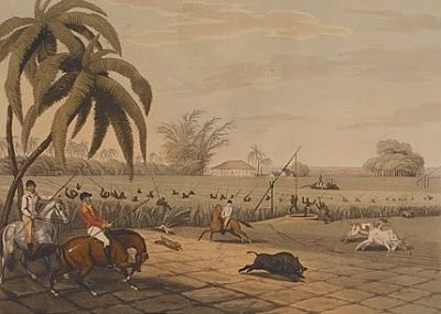 The Traveler... l âme du voyage: A Boars Death - Hog Spear - Pigsticking - Tusks