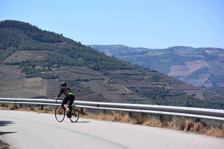 The Douro River's steep and twisting canyons have been laboriously terraced to make a horizontal home for grape vines and olive and almond trees.