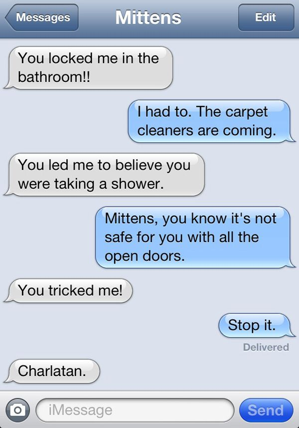 Locked In - Texts From Mittens | Catster