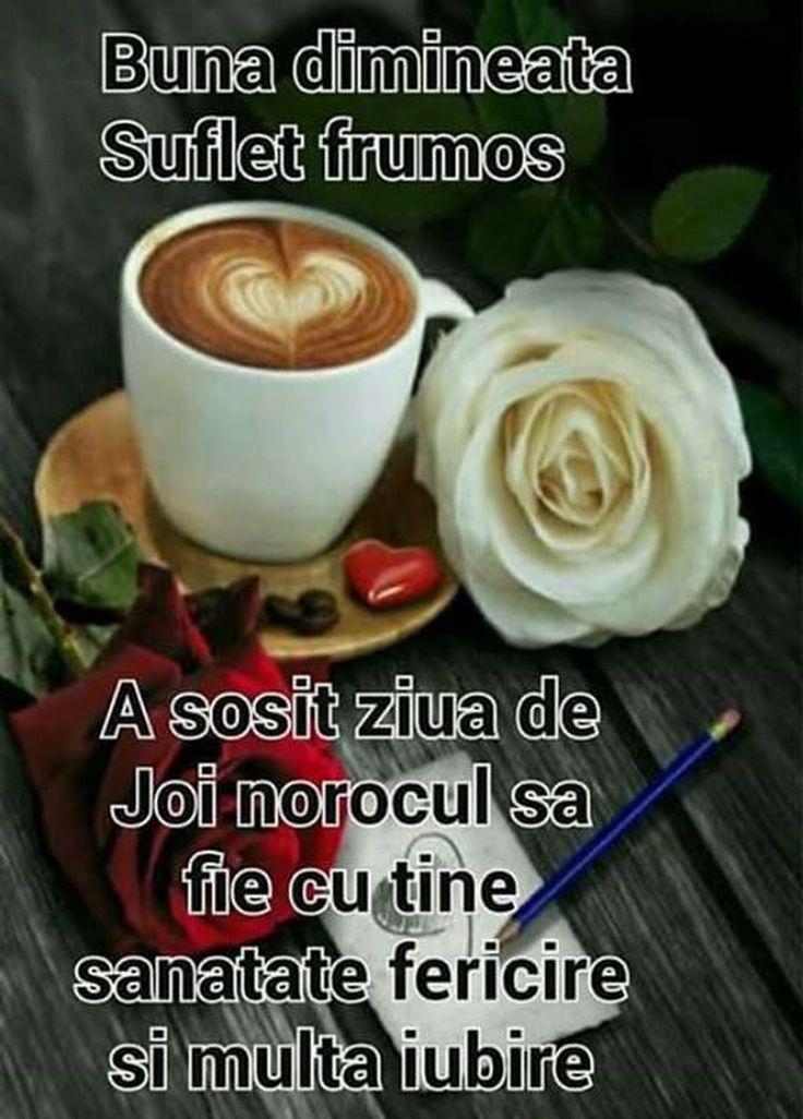 B_B Olga - Google+