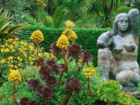 Tresco-Abbey-Gardens-Isles-of-Scilly-