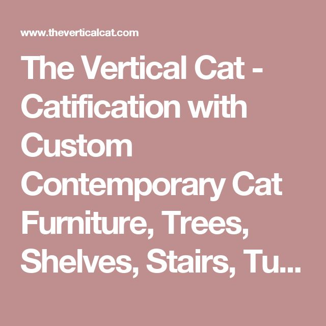 The Vertical Cat - Catification with Custom Contemporary Cat Furniture, Trees, Shelves, Stairs, Tunnels - Create vertical space to make a kitty superhighway   Enrich your feline's environment   Catify your home