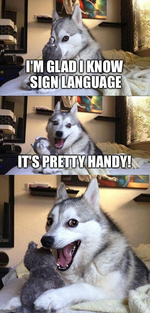 Bad Pun Dog | I'M GLAD I KNOW SIGN LANGUAGE IT'S PRETTY HANDY! | image tagged in memes,bad pun dog | made w/ Imgflip meme maker