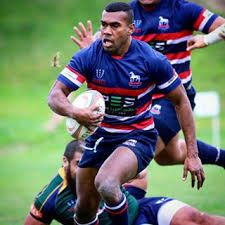 Image result for box hill rugby