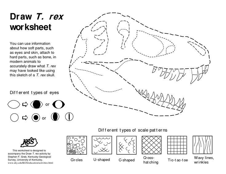 dinosaurs bones draw draw t rex worksheet pdf preschool worksheets drawings math. Black Bedroom Furniture Sets. Home Design Ideas