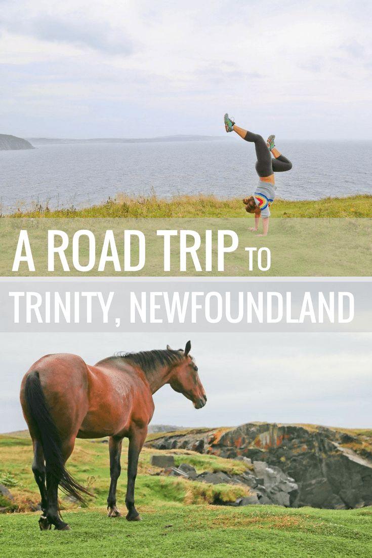 A Roadtrip to Trinity Newfoundland