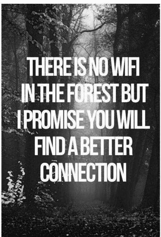 Il n'y a pas de Wi-fi dans la forêt, mais je vous promets que vous y trouverez une meilleure connexion.