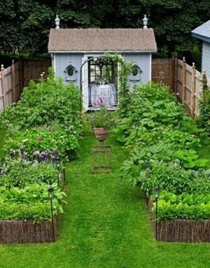 I like the casual look to this garden. Let's me know everything doesn't have to be ruler perfect.