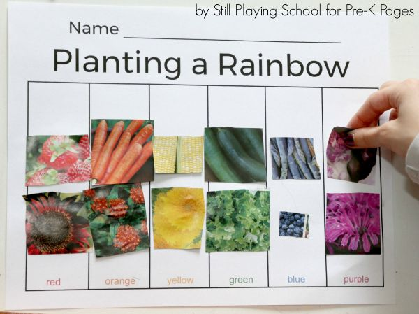 Planting A Rainbow Color Sort Planting A Rainbow Pre K Pages