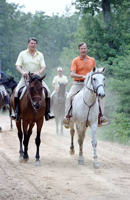 President Ronald Reagan and George Bush horseback riding at Quantico Marine Corps Base. 7/22/81.