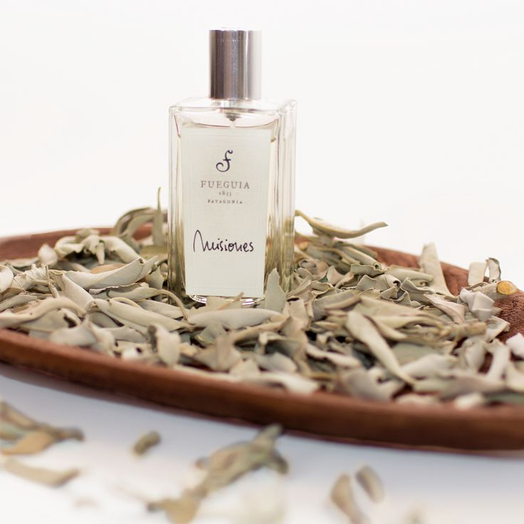Love this Fueguia 1833 fragrance and Sage leaves from Jardins D'Ecrivians. Thanks to FUGA for presenting this beautiful handcrafted wooden plate for Leaves collection. @fugarussia  http://www.jardinsdecrivains.com/en/candles/25-shaman-fumigation-de-sauge-blanche-de-californie.html