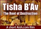 Tisha B'Av: The Root of Destruction