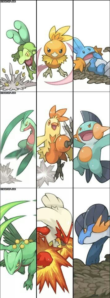 Hoenn League Starters - This gen was very hard to choose, but I probably relied on Treeko the most. Props to them all though.