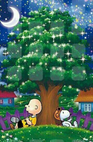 Charlie Brown and Snoopy enjoying the stars!